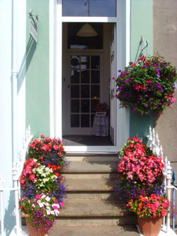Tenby Bed and Breakfast